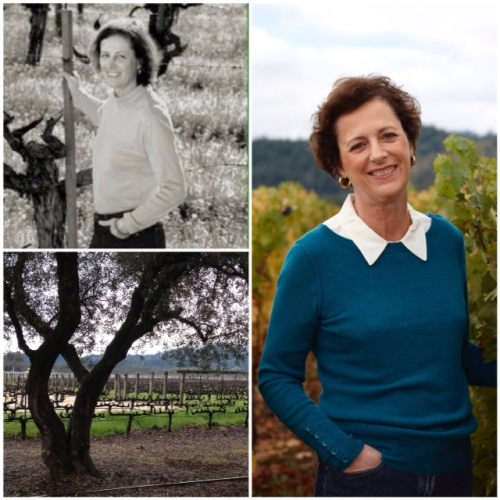 "Is To Kalon Vineyard a ""fountain of youth""?"